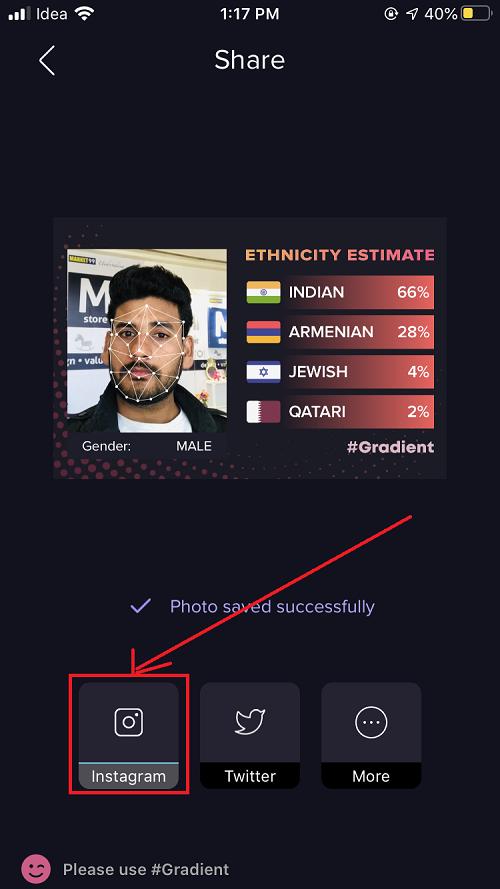 ethnicity instagram filter